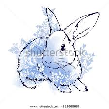 hand drawn rabbit stock images royalty free images u0026 vectors