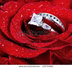 red rose rings images Set wedding rings red rose taken stock photo edit now shutterstock jpg