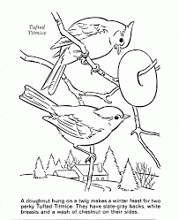 good forest animals coloring pages with nature coloring pages