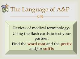 Human Anatomy And Physiology Terminology Survey Of Human Anatomy And Physiology Chapter 1 To 4