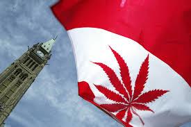 Weed Map Colorado by Marijuana News And Resources U2014 The Cannabist