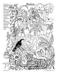 animal habitat coloring pages google 1st grade art