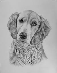 203 best coloring pages dogs images on pinterest hand drawn dog