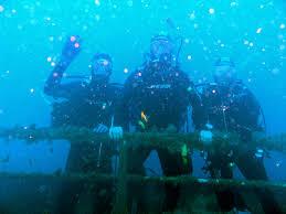 ssi open water diver grassi sub