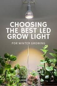 what is the best lighting for growing indoor choosing the best led grow light for winter growing