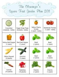 Square Foot Garden Layout Ideas You Will Never Believe These