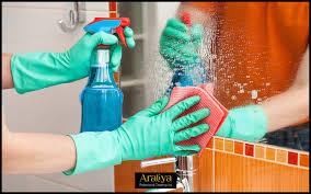 gallery araliya professional cleaning ltd in basingstoke