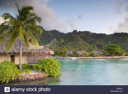 palm tree overwater bungalows stock photos u0026 palm tree overwater