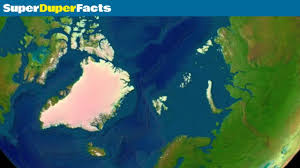 arctic facts fun facts for kids youtube