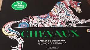 Présentation Chevaux Carnet de coloriages Marabout  YouTube