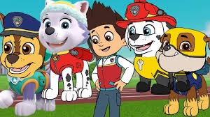 paw patrol everest wrong heads paw patrol chase rubble marshall