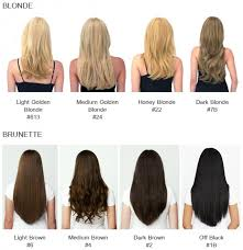 hair extensions fits like a halo hair extensions 16 20 no clip in one