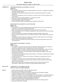 sle of resume knowledge management analyst resume sles velvet