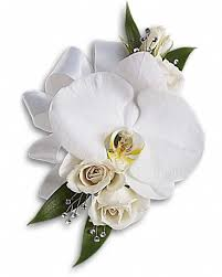 white corsages for prom prom and flower essentials corsages boutonnieres and more