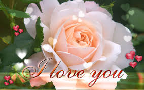 beautiful flowers of love just for you my love 6 incredible