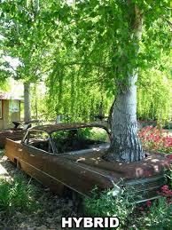 87 best windchimes garden ornaments images on garden