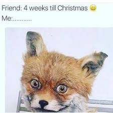Stoned Fox Meme - christmas stoned fox meme stoned best of the funny meme