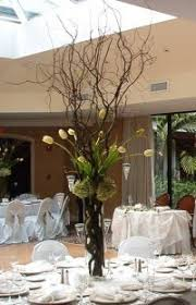 Curly Willow Branches Cheap Fresh Willow Branches Find Fresh Willow Branches Deals On