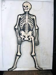 41 cardboard skeleton door decorations picture of diy skeleton