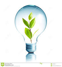 28 light bulb for growing plants barry hurd entrepreneur