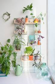 best images about interiors pinterest plantshelfie with the fency from tolhuijs