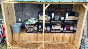 Rabbit Hutch Plans For Meat Rabbits Dumor Stackable Rabbit Cages Daily Hike