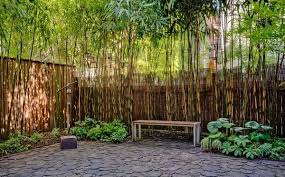 Bamboo Gardens for Oriental Decoration Ideas