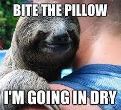 Dragon Sloth Meme - amusing dragon sloth meme picture quotesbae