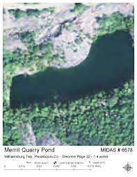 Midas 32 Lakes Of Maine Lake Overview Merrill Quarry Pond Brownville