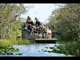 fan boat tours florida alligator air boat tours everglades miami florida 2015 exclusive