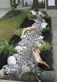 rock garden with creeping thyme early blue violets fire witch