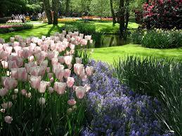 martha u0027s vienna keukenhof one of the world u0027s most beautiful gardens