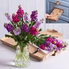 flowers birthday birthday flowers birthday roses bouquets next flowers uk