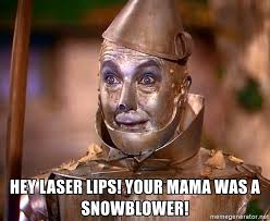 Wizard Of Oz Meme Generator - hey laser lips your mama was a snowblower wizard of oz tin man