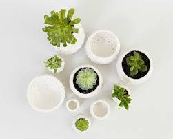 20 ways to modern ceramic planters