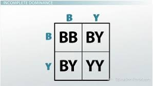 exceptions to simple dominance codominance and incomplete