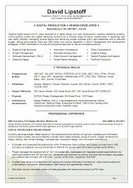 Resume Setup Examples Resume Format Example