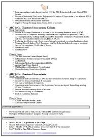 auditing resume examples resume professional writersexample of