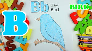 learning and coloring alphabet letter b bird coloring pages