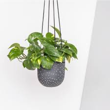 incridible simple hanging planters 19287