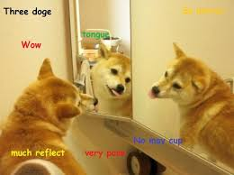 Doge Know Your Meme - image 636690 doge know your meme