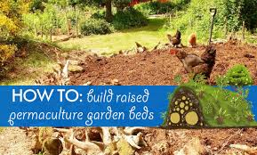 Permaculture Vegetable Garden Layout Diy Hugelkultur How To Build Raised Permaculture Garden Beds