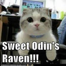Meme Sweet - thor meme 002 sweet odins raven comics and memes