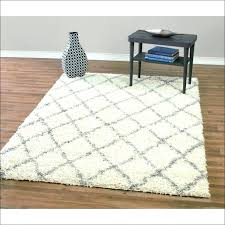 Ikea Indoor Outdoor Rug Ikea Indoor Outdoor Rugs Adca22 Org