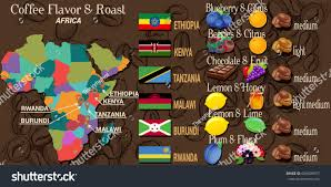 Africa Map Game by Vector Infographic Concept Coffee Map Africa Stock Vector