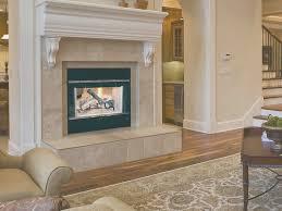 white fireplace doors gallery doors design ideas