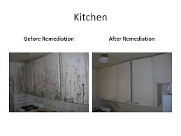 before after cleaning mold experts office photo
