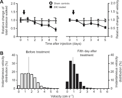 control of motor activity in crayfish by the steroid hormone 20