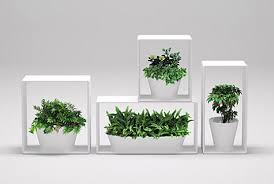 Bathroom Flowers And Plants Nendo Bathroom Collection U2013 Minimalissimo