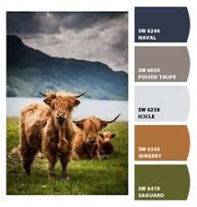 honey bees paint color sw 9018 by sherwin williams view interior
